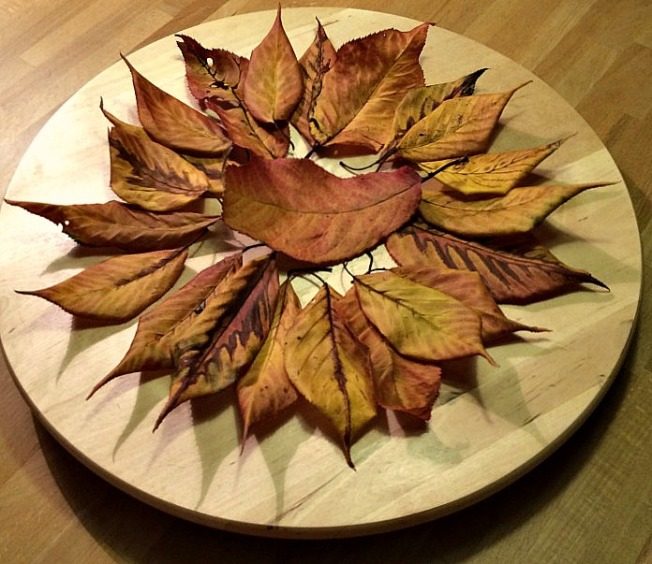 Herbstteller2