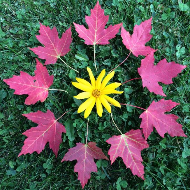 Herbst-Mandala