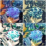 BlaueRose-Collage