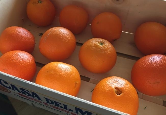 Orangenbio-2